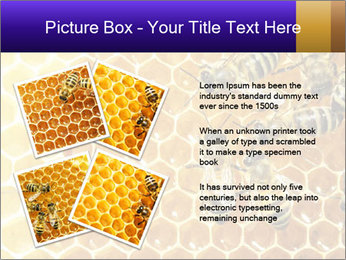 0000075025 PowerPoint Template - Slide 23