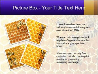 0000075025 PowerPoint Templates - Slide 23