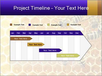 0000075025 PowerPoint Templates - Slide 25