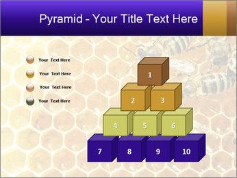 0000075025 PowerPoint Templates - Slide 31