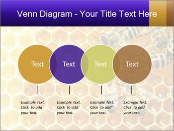 0000075025 PowerPoint Template - Slide 32