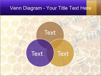 0000075025 PowerPoint Templates - Slide 33