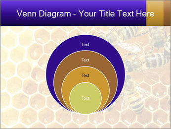 0000075025 PowerPoint Template - Slide 34