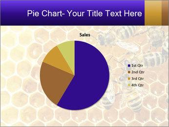 0000075025 PowerPoint Templates - Slide 36