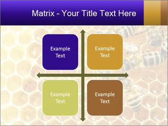 0000075025 PowerPoint Templates - Slide 37