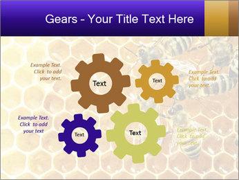 0000075025 PowerPoint Templates - Slide 47