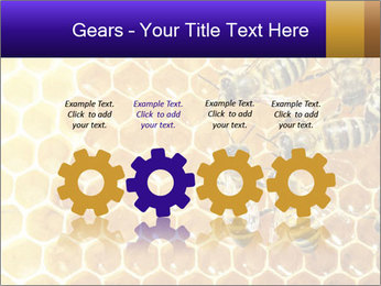 0000075025 PowerPoint Templates - Slide 48