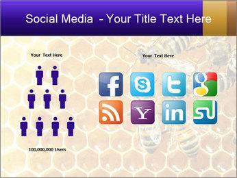 0000075025 PowerPoint Templates - Slide 5