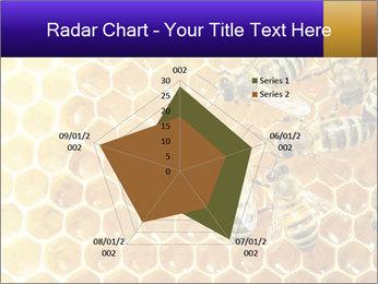 0000075025 PowerPoint Templates - Slide 51