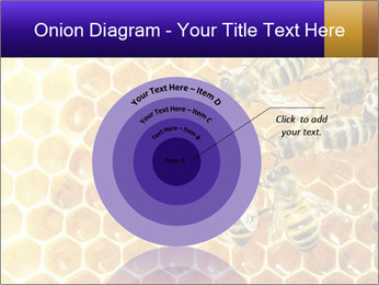 0000075025 PowerPoint Template - Slide 61