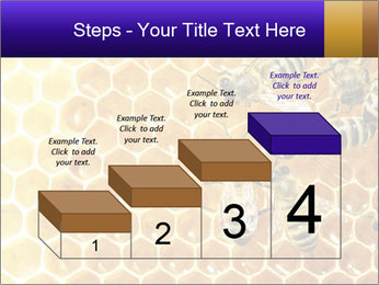 0000075025 PowerPoint Template - Slide 64