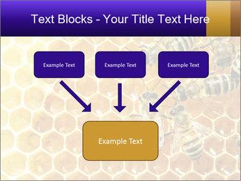 0000075025 PowerPoint Templates - Slide 70
