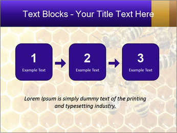 0000075025 PowerPoint Template - Slide 71