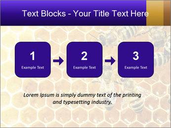0000075025 PowerPoint Templates - Slide 71
