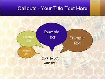 0000075025 PowerPoint Templates - Slide 73