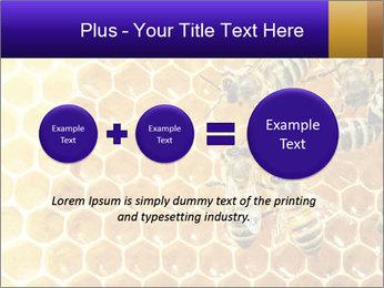 0000075025 PowerPoint Templates - Slide 75