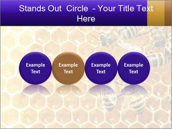 0000075025 PowerPoint Templates - Slide 76