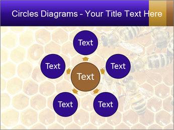0000075025 PowerPoint Templates - Slide 78
