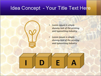 0000075025 PowerPoint Template - Slide 80