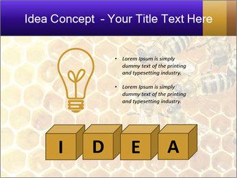0000075025 PowerPoint Templates - Slide 80