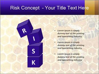 0000075025 PowerPoint Templates - Slide 81