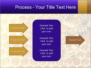 0000075025 PowerPoint Template - Slide 85