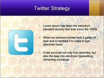 0000075025 PowerPoint Templates - Slide 9