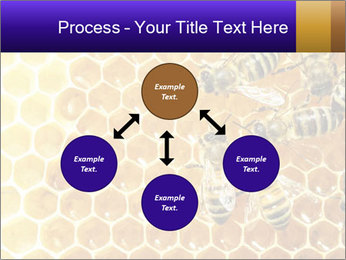0000075025 PowerPoint Template - Slide 91