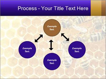 0000075025 PowerPoint Templates - Slide 91