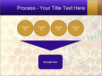 0000075025 PowerPoint Templates - Slide 93