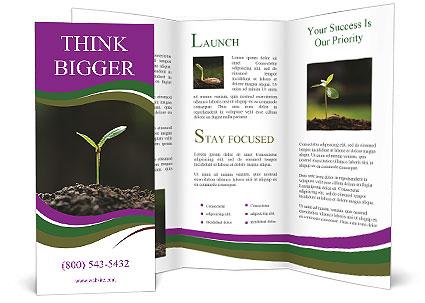 0000075033 Brochure Template