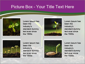 0000075033 PowerPoint Templates - Slide 14