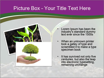 0000075033 PowerPoint Templates - Slide 20