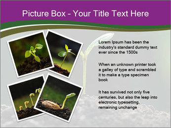 0000075033 PowerPoint Templates - Slide 23