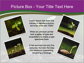 0000075033 PowerPoint Templates - Slide 24