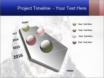 0000075037 PowerPoint Templates - Slide 26