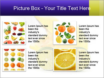 0000075044 PowerPoint Template - Slide 14