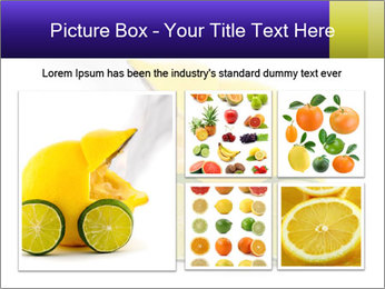 0000075044 PowerPoint Template - Slide 19