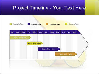 0000075044 PowerPoint Template - Slide 25