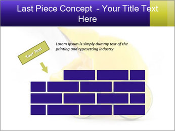 0000075044 PowerPoint Template - Slide 46