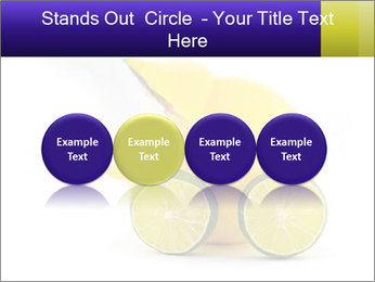 0000075044 PowerPoint Template - Slide 76