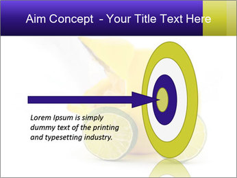 0000075044 PowerPoint Template - Slide 83