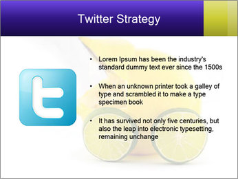 0000075044 PowerPoint Template - Slide 9