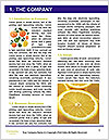 0000075044 Word Template - Page 3