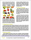 0000075044 Word Template - Page 4