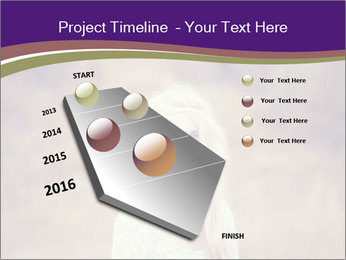 0000075065 PowerPoint Template - Slide 26