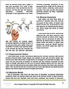 0000075069 Word Template - Page 4