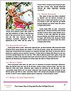 0000075076 Word Templates - Page 4