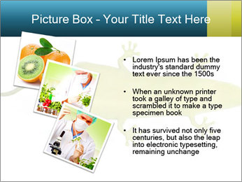 0000075077 PowerPoint Template - Slide 17