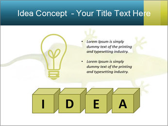 0000075077 PowerPoint Template - Slide 80